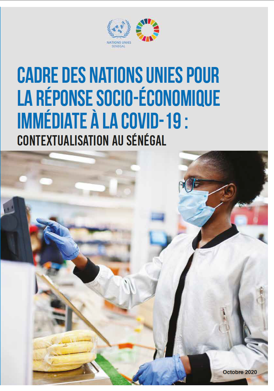Cadre des Nations Unies pour la réponse socio-économique immédiate à la COVID-19