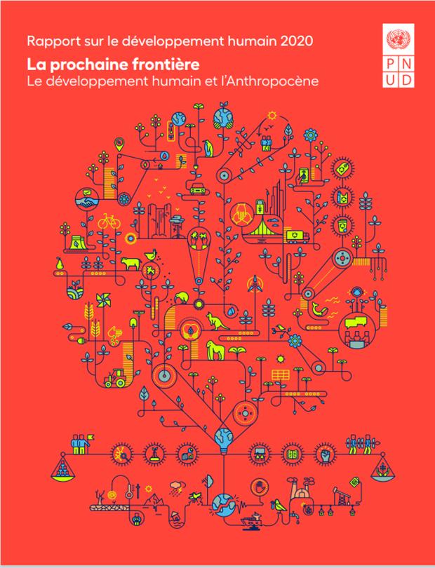 Rapport  mondial sur le développement humain (RMDH) 2020